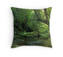 Follow me Downstream - Kangaroo Valley, NSW Throw Pillow