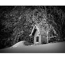 Say hello to winter Photographic Print