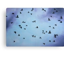 Birds over Stormy Sky Canvas Print