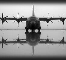 Herc reflection by kiwistoofer