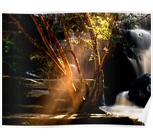 I Can See the Light - Somersby Falls, NSW Poster