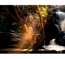 I Can See the Light - Somersby Falls, NSW Photographic Print