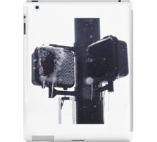 Frozen crosswalk light iPad Case/Skin