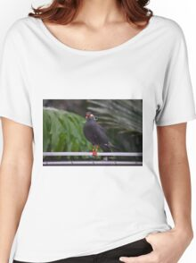 National Aviary Pittsburgh Series - 14 Women's Relaxed Fit T-Shirt