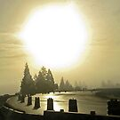 fog + flare by Bruce  Dickson