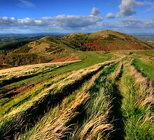 The Malvern Hills: North Hill View by Angie Latham