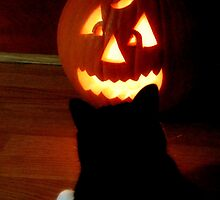Stare Down-Halloween Moment by Sandy Woolard