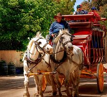 Horses and Coach at Echuca by Christine Smith