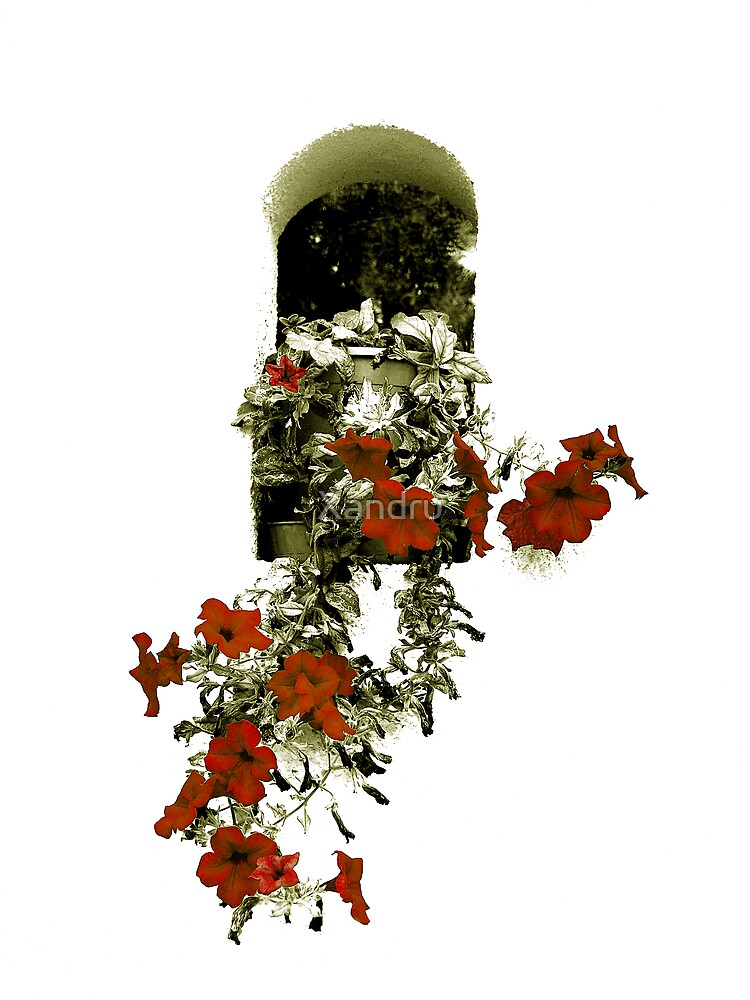 Hanging Flowers by Xandru