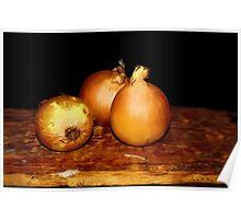 Onions - Still Life Poster
