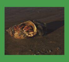 Hermit Crab on Fahan Beach One Piece - Short Sleeve