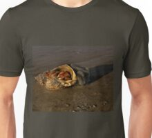Hermit Crab on Fahan Beach Unisex T-Shirt