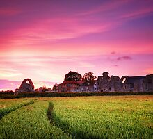 Leiston Abbey 1. by Wayne Bradshaw