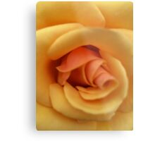 Roses are not always Red! Metal Print