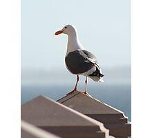 My Ocean View Photographic Print