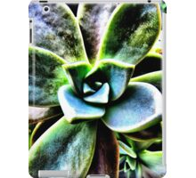 Spiral Out iPad Case/Skin
