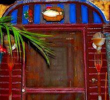 Carl's Front Door Way by glink
