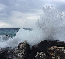 Ligurian Coast  by Robin O'Luanaigh
