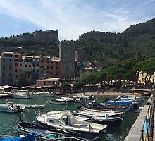 Portovenere, Italy by Robin O'Luanaigh