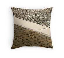 Ancient and modern Throw Pillow