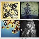 Homepage 24.11.08 by Melanie  Dooley