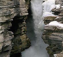 Athabasca Falls by Stephen Thomas