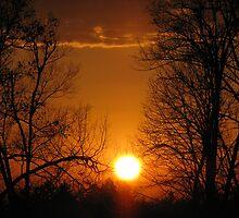 November Sunset by JohnEvans