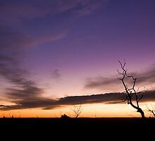 Mt Cooke Sunset by DistantLight