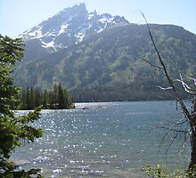 Jenny's Lake by George Lloyd