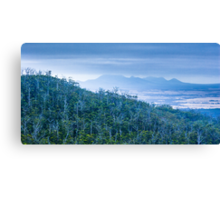 Forest and Mountains Canvas Print