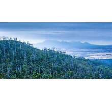 Forest and Mountains Photographic Print