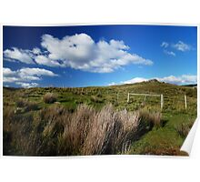 Tall Grasses and the Fence Line Poster