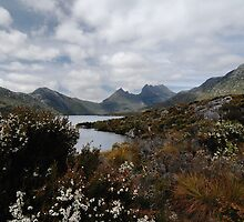 Cradle Mountain, Tasmania by Janet Leadbeater