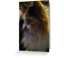 """A-Wahoo """"Crazy Lady"""" Whitefeather Greeting Card"""