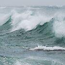Surf Crystals - Redhead Beach NSW by Bev Woodman