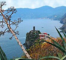 Land ans seascape, Cinque Terre by Monica Di Carlo