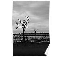 Lake Fyans in Black & White Poster