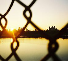 Manhattan through the wire by Andrew Coogan