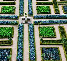 Formal Garden - Chateau Villandry, Loire Valley by Alison Cornford-Matheson