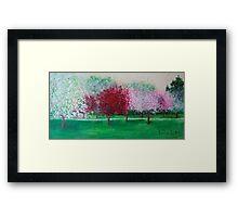 Parkland Blossoms Framed Print