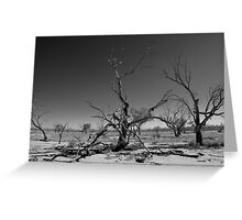 Lake Pinaroo - Sturt National Park - North West NSW Greeting Card