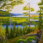 Arctic Wilderness by Veikko  Suikkanen
