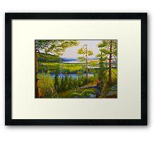 Arctic Wilderness Framed Print