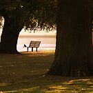 LONELINESS 2 by amulya