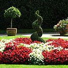 Gardens - Mount Edgcumbe Country Park by Marilyn Harris
