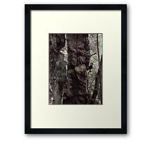 Over the Dike Framed Print