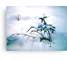 Winter...After The Storm Canvas Print