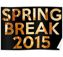 spring break 2015 Poster