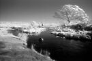 Inky black Mowamba River by Syd Winer