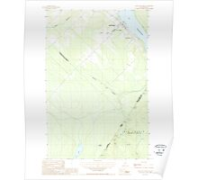 Maine USGS Historical Map Saint-Eleuthere 460826 1987 24000 Poster